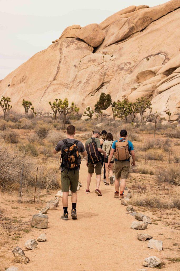 desert hiking shorts