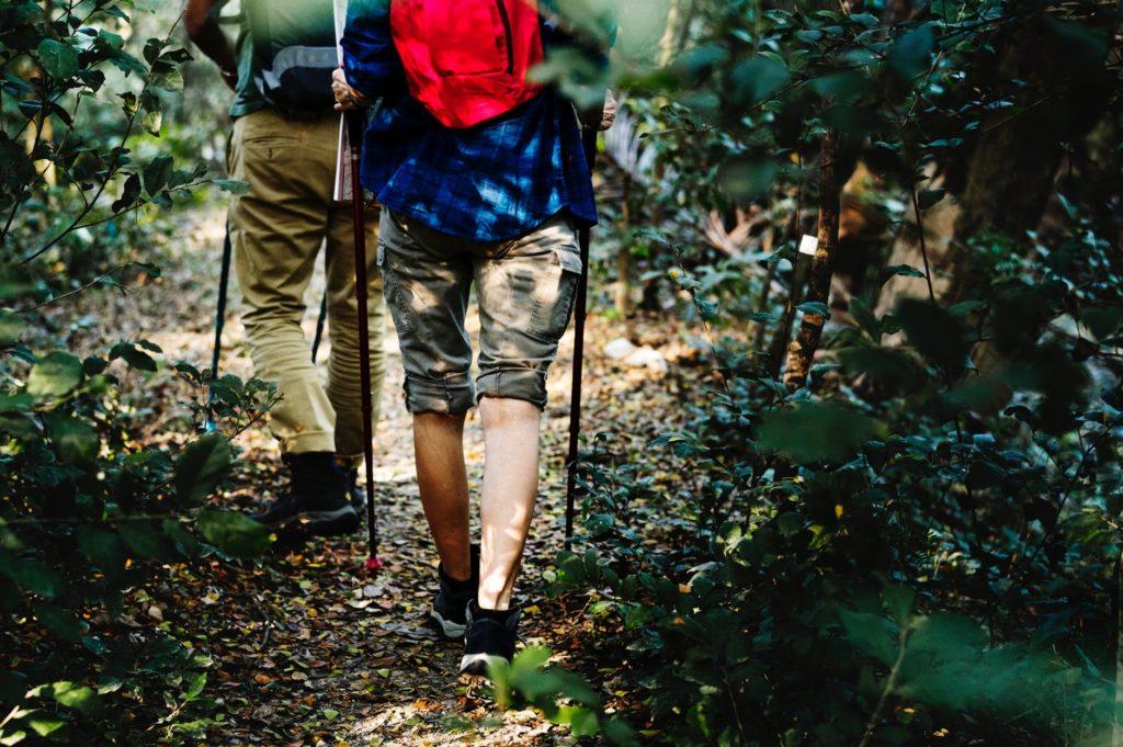 trekking pole pros vs cons